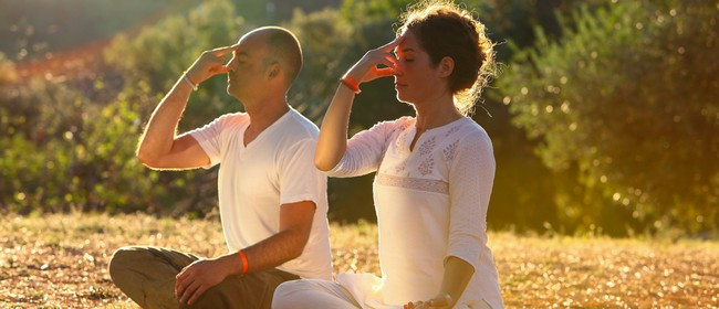 6-Week Yoga Course for Beginners