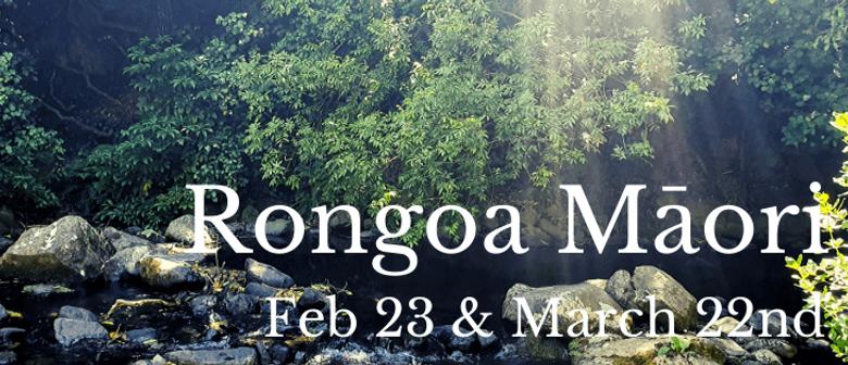 Rongoā Māori Workshop - Level 1
