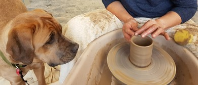 Wheel Thrown and Hand-built Pottery with Jenni Taris