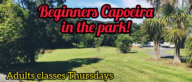 Teens/Adults Capoeira At the Park