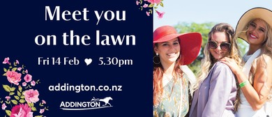 Meet You On the Lawn
