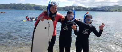 Whitireia Park Community Snorkelling Day