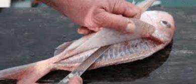 Knife Skills- -Filleting a Fish