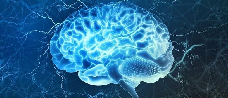 Nourishing Foods for Optimum Mental and Brain Function