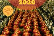 Só Samba: Carnaval 2020