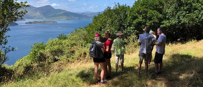 Marlborough Sounds Day Excursion: Hiking, Lunch, Boat Ride