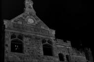 Takahē Twilight Tours
