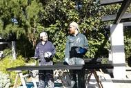The Joys of Volunteering - Seva Bee Days