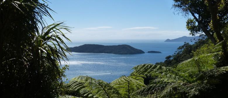 Motuara Island Bird Sanctuary Cruise: CANCELLED