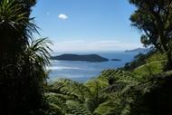 Motuara Island Bird Sanctuary Cruise