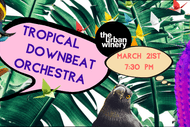 Tropical Downbeat Orchestra