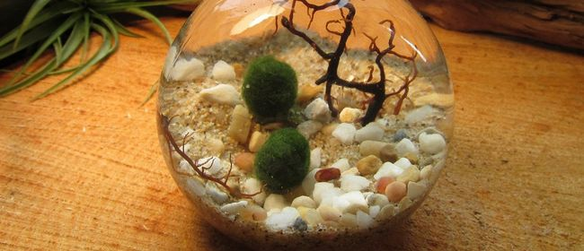Craft, Conversation and Cabernet with Astar: Water Garden