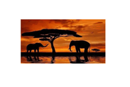 Wine and Paint Party - African Elephants Painting