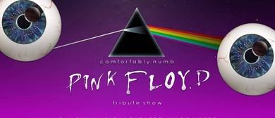 Comfortably Numb - Pink <em>Floyd</em> Tribute
