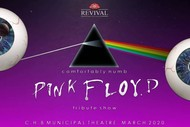 Comfortably Numb - Pink Floyd Tribute