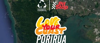 Porirua Harbour Clean-Up — Love Your Coast 2020