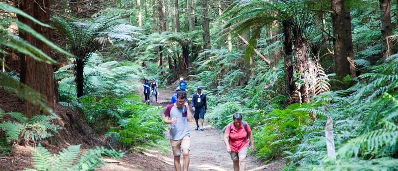 Rotorua Walking Festival 2020