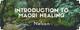 Introduction to Māori Healing