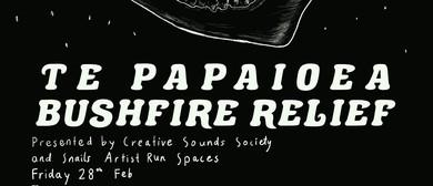 Te Papaioea Bushfire Relief