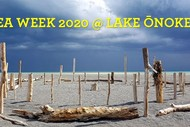 Sea Week 2020: Tour and Beach Tidy @ Lake Onoke