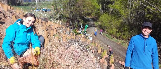 Community Native Planting Day