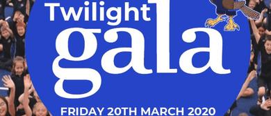 Te Awamutu Primary School Twilight Gala