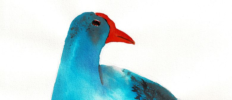 Watercolour & Wine - Pukeko - Paintvine