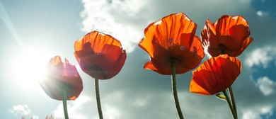 Anzac Day Service - Kaikoura: CANCELLED