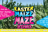Easter Maize Maze Egg Hunt: CANCELLED