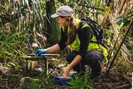 Pest Free Whau! Urban Trapping Workshop – EcoFest West: CANCELLED