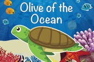 Olive Of The Ocean