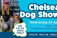 Chelsea Dog Show: CANCELLED