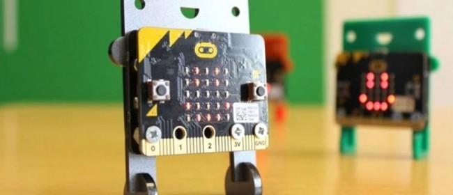 Holiday Programme - Micro: Bit Coding & Electronics