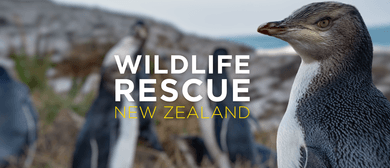 Wild Movies – Wildlife Rescue NZ – Penguin Tsunami: CANCELLED