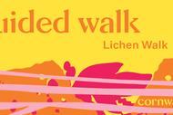 Guided Walk: Lichen: CANCELLED