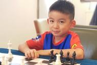 Chess Lovers Lock-down Program (Kids)
