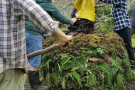Composting & Plant Propagation Workshop