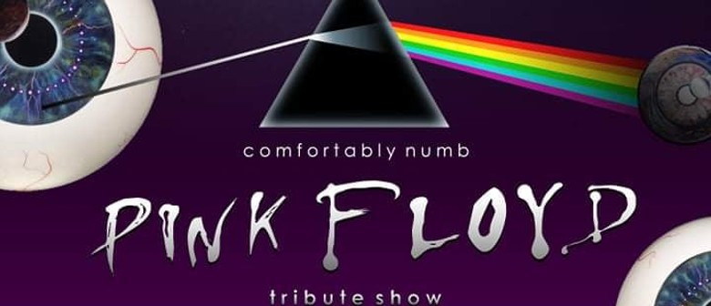 Comfortably Numb - A Tribute to Pink Floyd