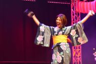 Japan Festival Wellington