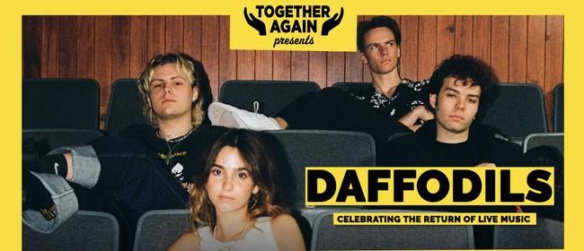 Together Again - Daffodils