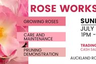 Auckland Rose Society Workshop