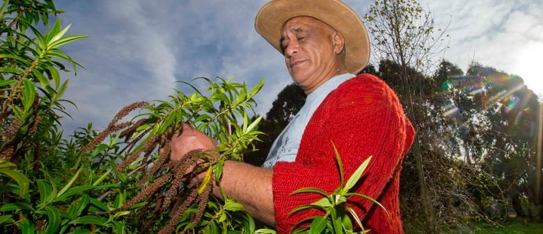 Matariki Planting at Dawn