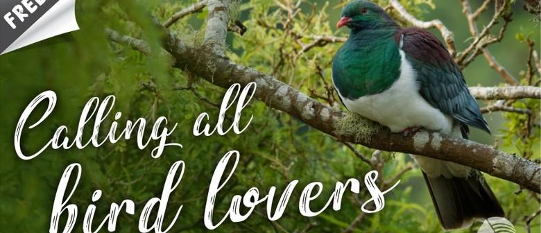 Calling All Bird Lovers