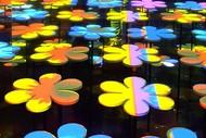 Pop Garden Exhibition