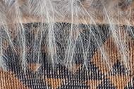 Toi Raranga - The Art of Weaving