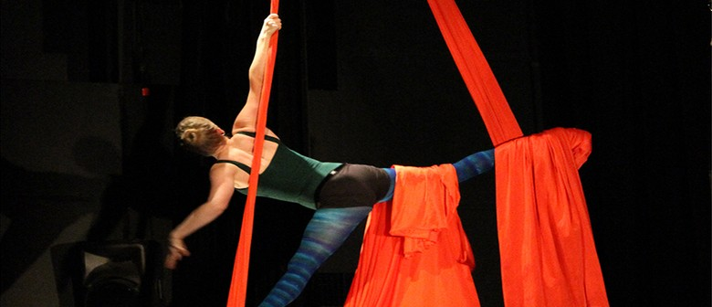 Open Circus Arts Classes (For Adults 16+)