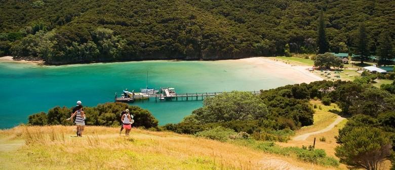 Urupukapuka Island - Walk 6