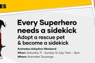 Pet Adoption Weekend