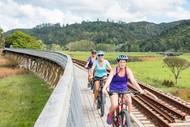 Bay of Islands Vintage Railway Bike & Hike - Walk 20