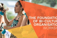 The Foundations of Bi-Cultural Organisations